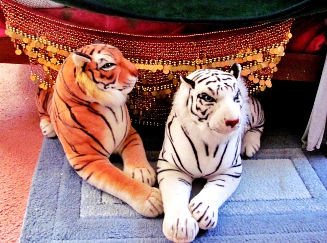 My Tigers one